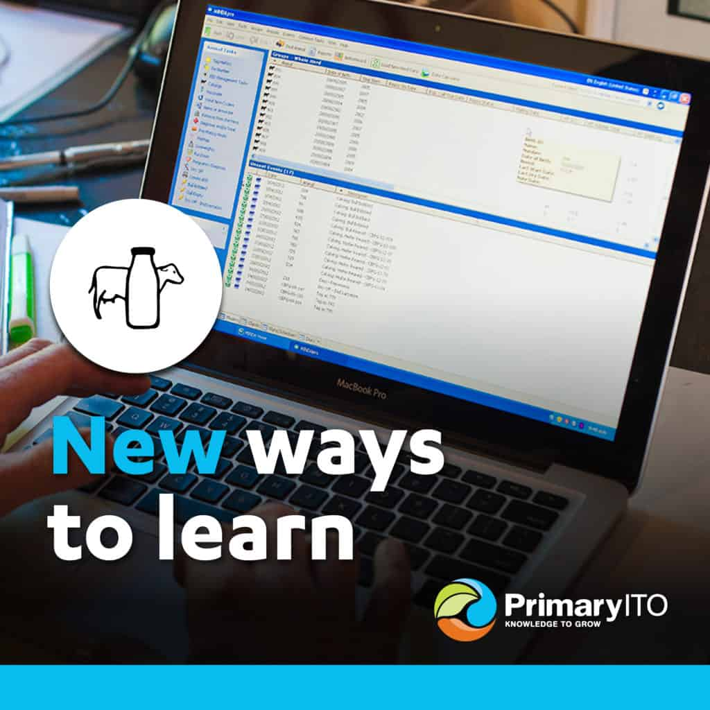 PrimaryITO Online Learning